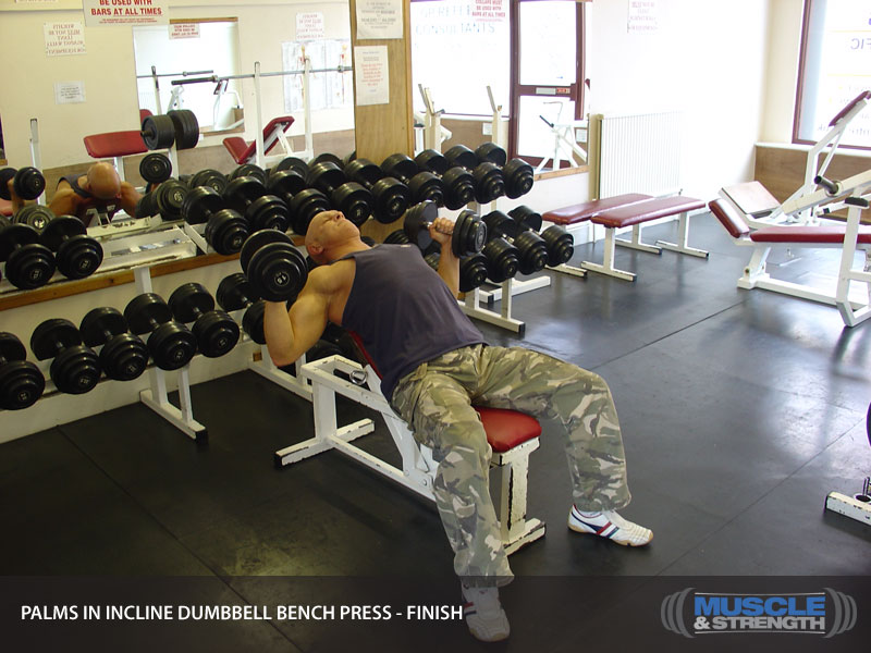 Palms In Incline Dumbbell Bench Press Video Exercise Guide