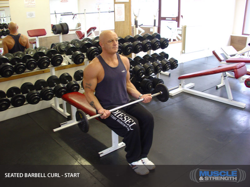 Seated Barbell Curl Video Exercise Guide Amp Tips Muscle