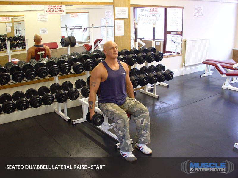 Seated Dumbbell Lateral Raise Video Exercise Guide Amp Tips