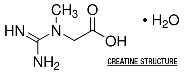 Creatine Monohydrate: Benefits, Side Effects, Dosages