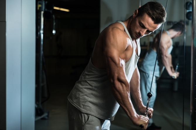How To Build GiantSized Horseshoe Triceps  Muscle  Strength