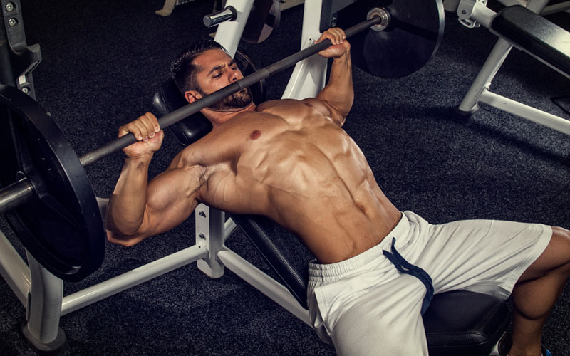 150 Muscle Building Fitness And Diet Myths Muscle