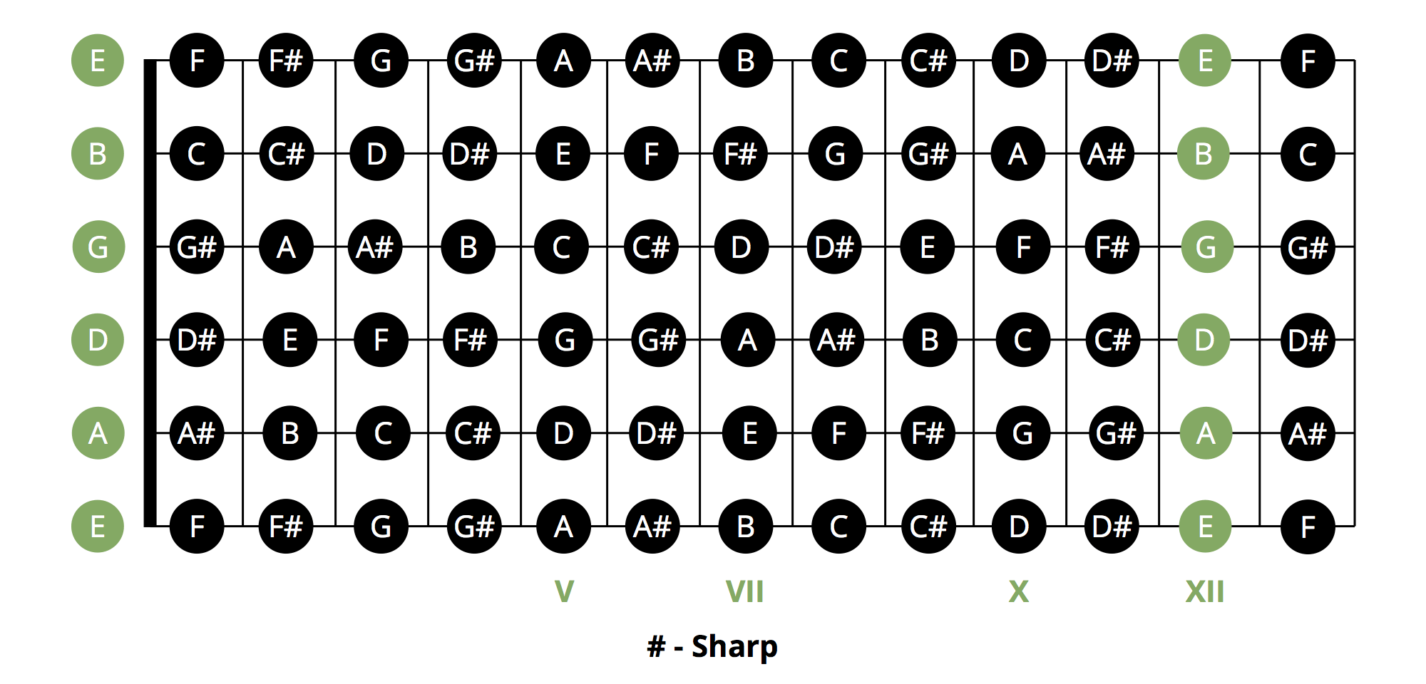 hight resolution of these will help you determine the root for playing chords using the moveable barre chords method above