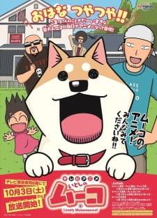 Doge!