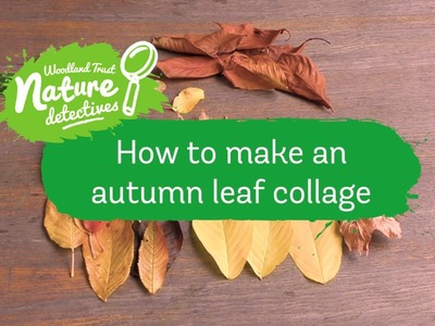 ideas leaf collage autumn