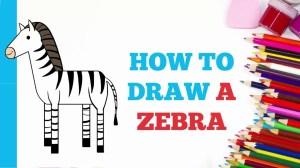 zebra draw easy drawing steps beginners few tutorial