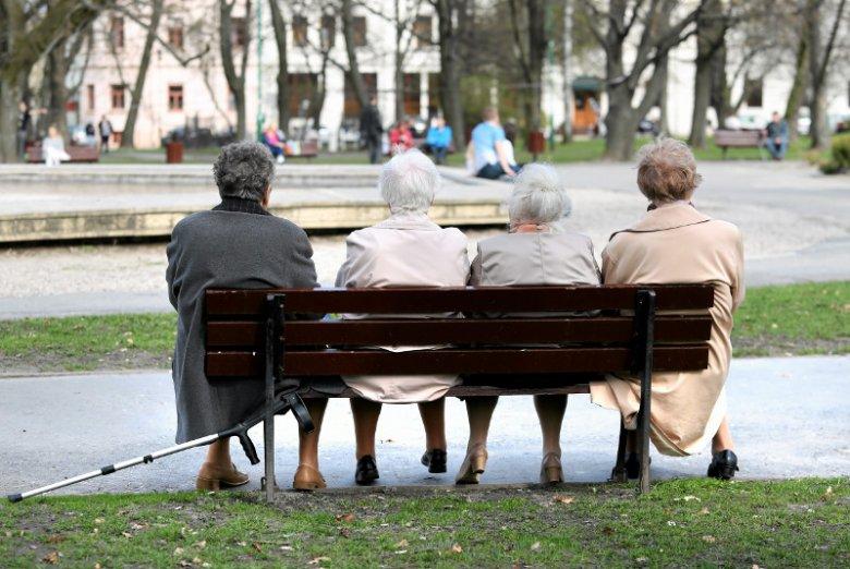 Starsze panie siedzą na ławce w parku wLublinie
