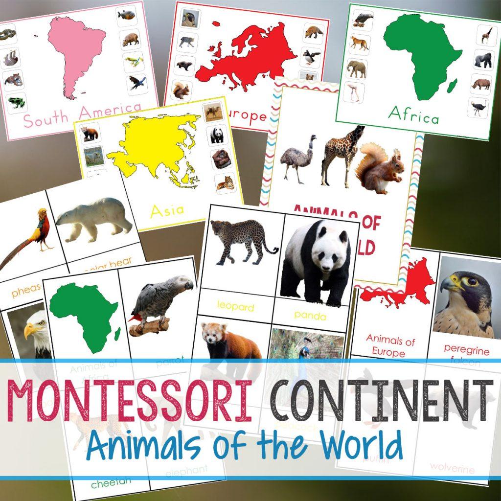 150 Amazing Montessori Activities And Free Printables