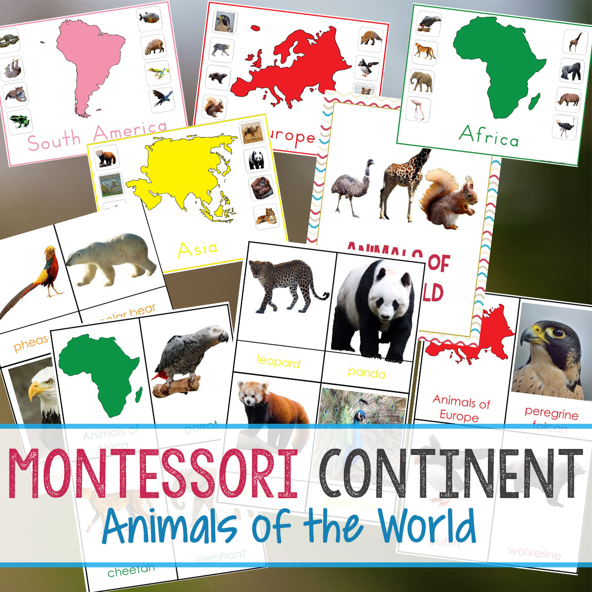 Animals And Continents Printables