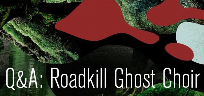 web roadkill