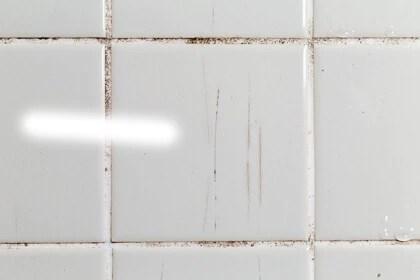 salle de bain plaques ou dalles pvc
