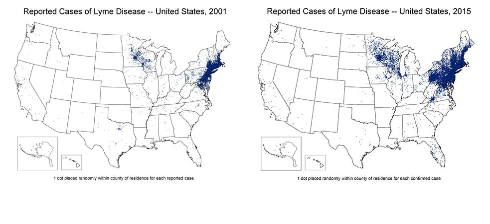 Attention Hunters: Grim Forecast for Lyme Disease in the