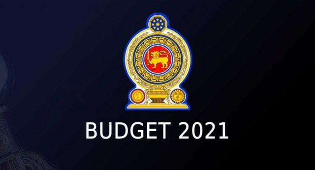 Second reading of 2021 Budget passed with a majority of 99 votes