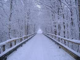 foto bij artikel Is winterdepressie een mythe?