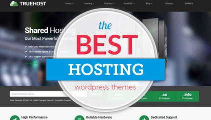 Best Video Hosting Options (with Embeddable Players) for