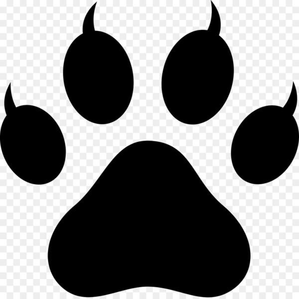 polydactyl cat paw footprint