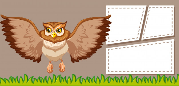 owl on blank note
