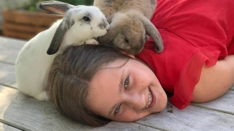 vandaag dierendag nos jeugdjournaal