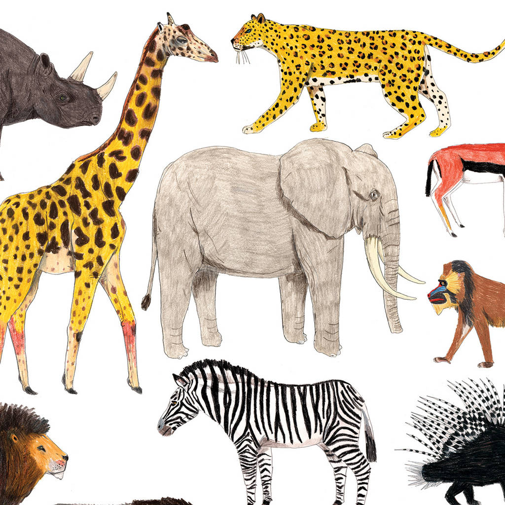 African Animals Print By James Barker