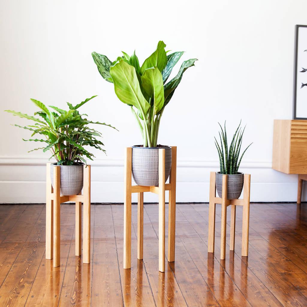 Plant Stands By James Design | notonthehighstreet.com
