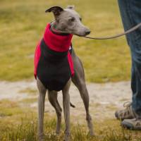 two tone fleece dog jumper by redhound for dogs ...
