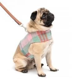 macaroon tweed harness [ 1024 x 1024 Pixel ]