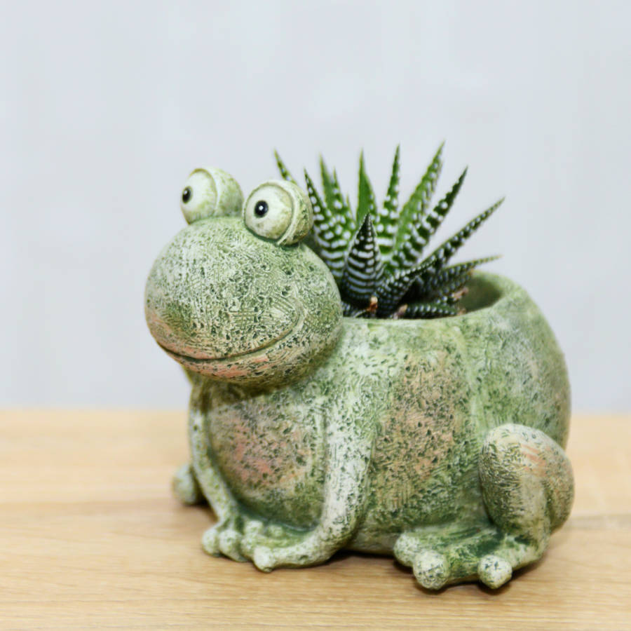 Frog Planter With A Plant By Dingading Terrariums