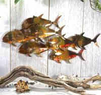 copper fish shoal garden wall art seven fish by london ...