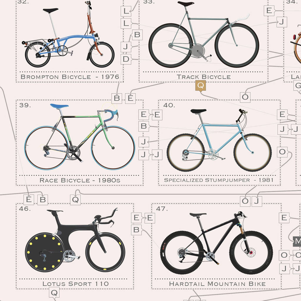 the bicycle family tree bike poster wall art print by