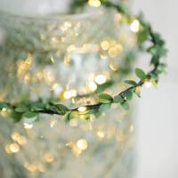 outdoor mini leaf fairy lights by home & glory ...