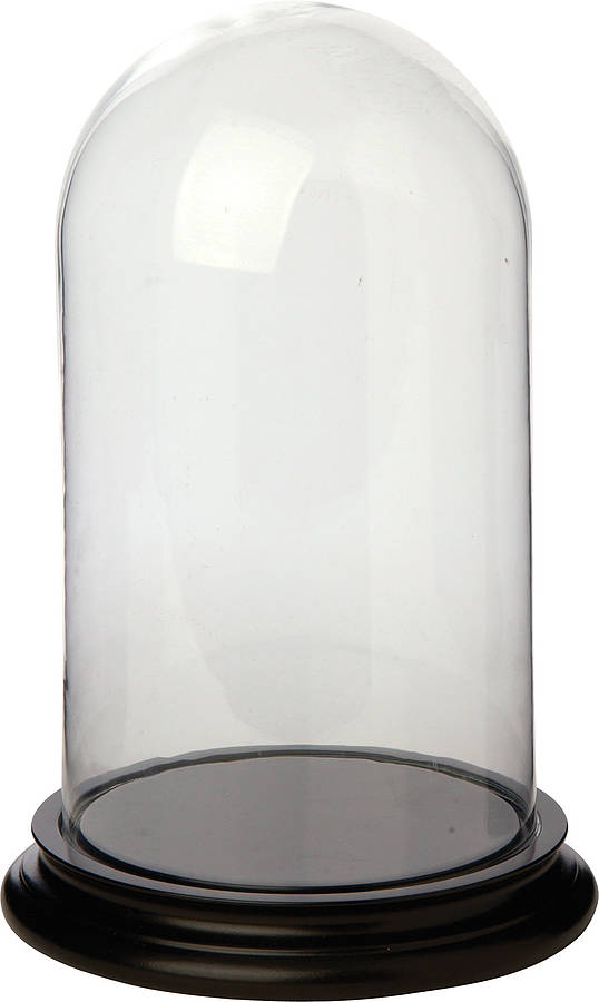 Glass Dome Bell Jars By I Love Retro Notonthehighstreet Com