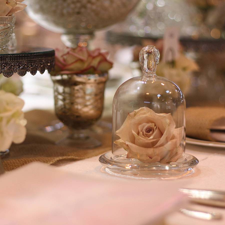 Mini Glass Dome Bell Jar By The Wedding Of My Dreams