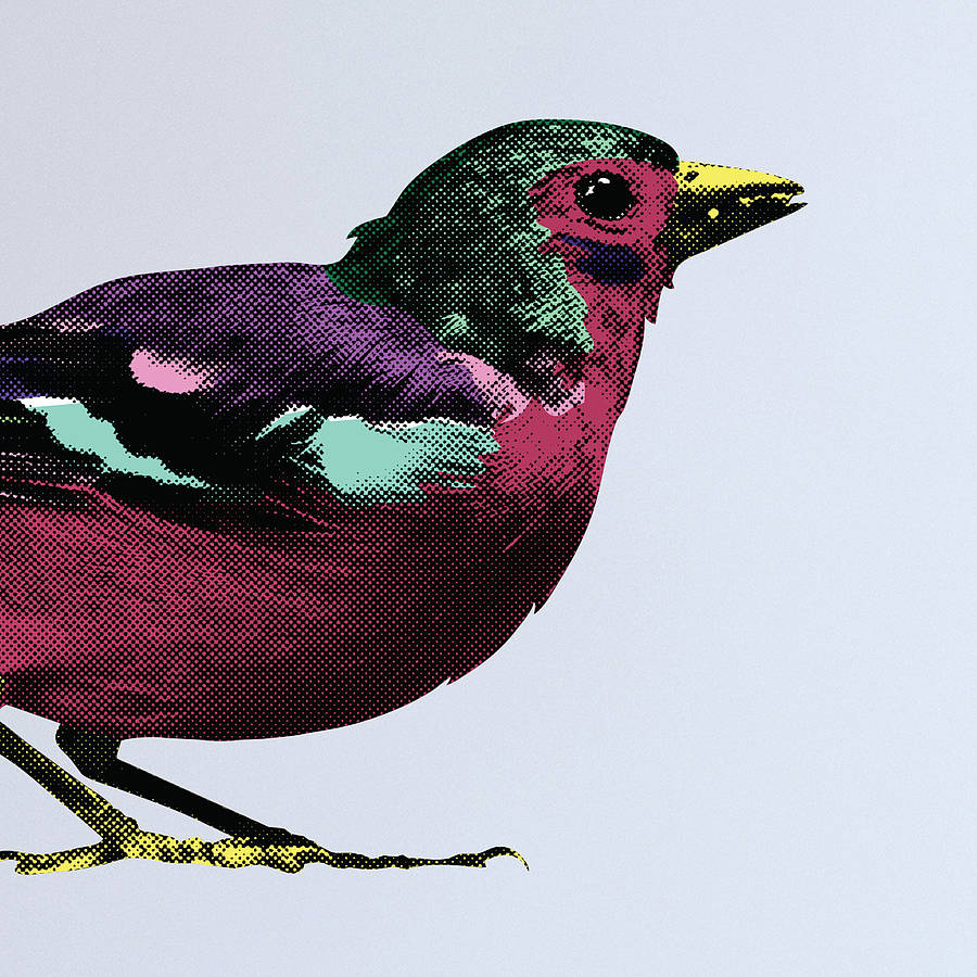 pop art sparrows wall stickers by the binary box