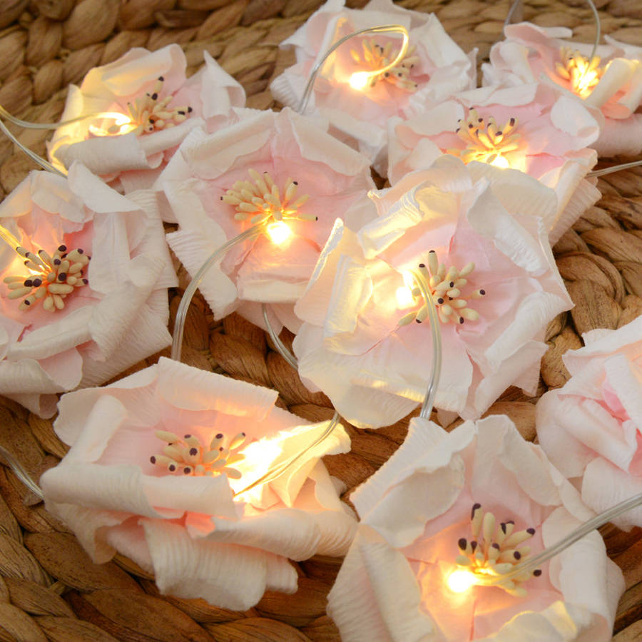 Rose Fairy Lights By Home Amp Glory