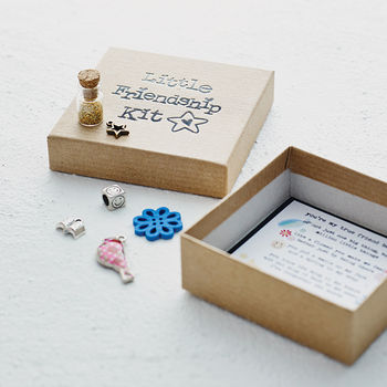 'Little Friendship Kit' - showing open box with detail of the charms cheap gift ideas for teen girls