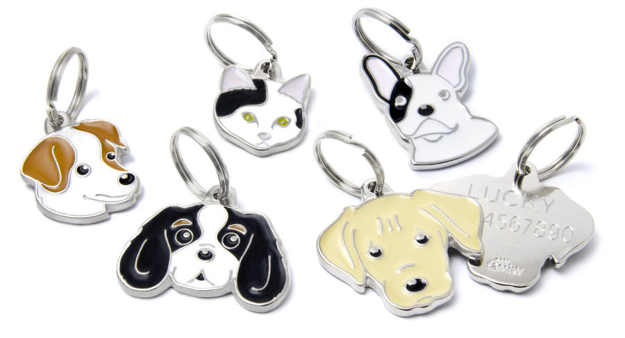 engraved breed dog id