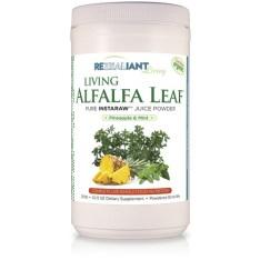 Living-Alfalfa-Leaf-Pineapple-Mint-Powder1