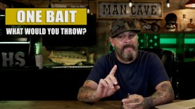 One Bait Only : What Would You Throw?
