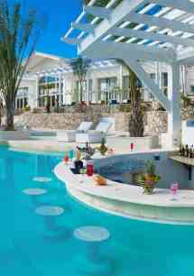 Pool with Swim Up Bar Design Ideas