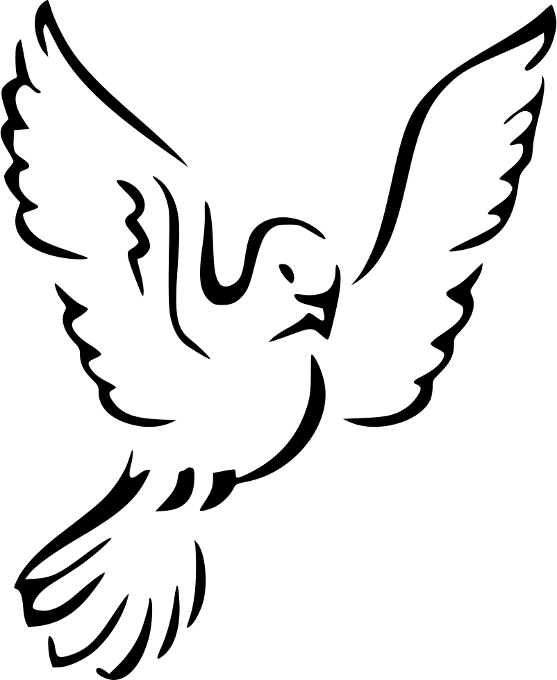 Dove Svg Png Icon Free Download 438464  OnlineWebFontsCOM