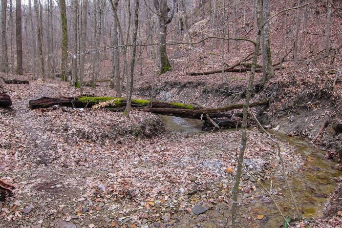 4-Low Gap Trail3