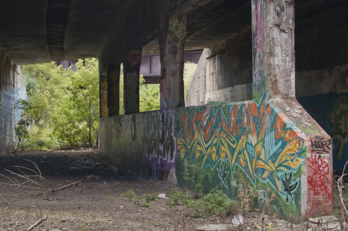 10 Abandoned Places In Illinois That Nature Is Reclaiming
