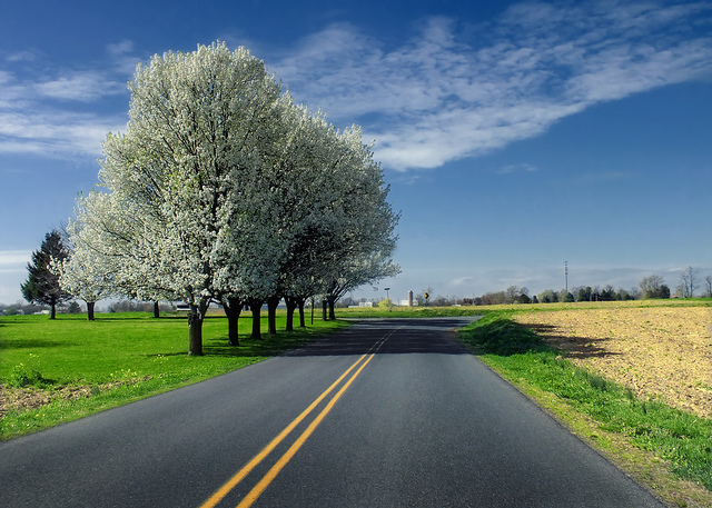 11 Country Roads In Pennsylvania For A Scenic Drive