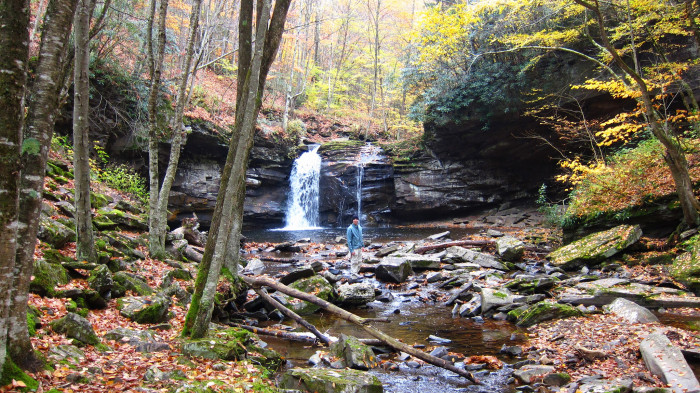 12 Spots In West Virginia Where Nature Will Totally Relax You