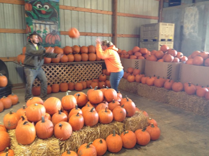 Dont Miss These 19 Great Pumpkin Patches In Nebraska This