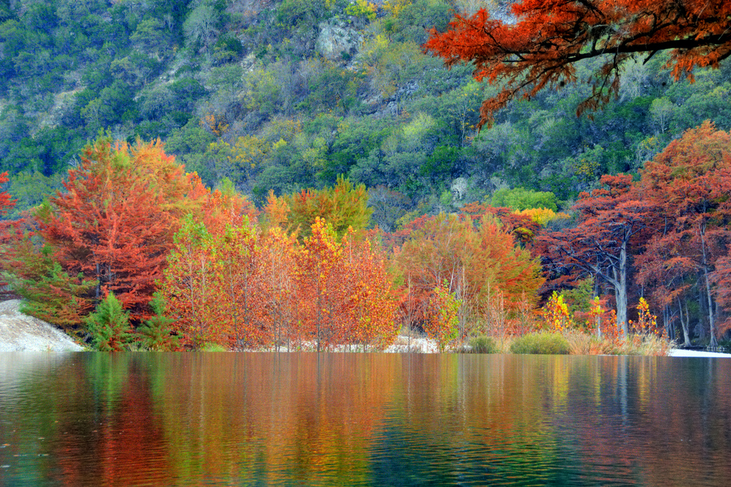 Michigan Fall Colors Wallpaper The Best Fall Destinations In Texas