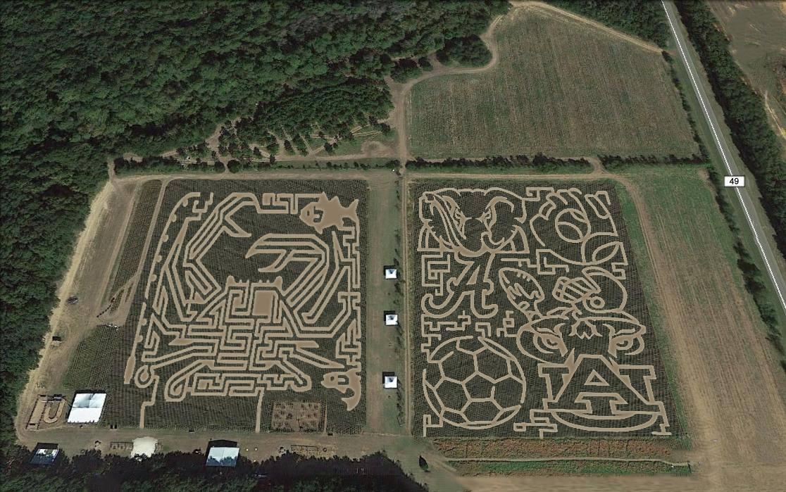 Best Corn Mazes Michigan