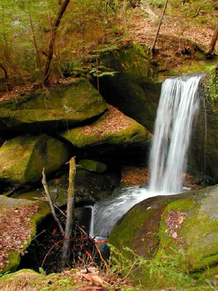 The Most Incredible Natural Wonders In Alabama