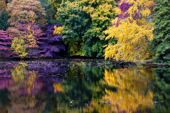 Fall Of The Autumn Hd Wallpaper 7 Amazing Natural Wonders In Connecticut