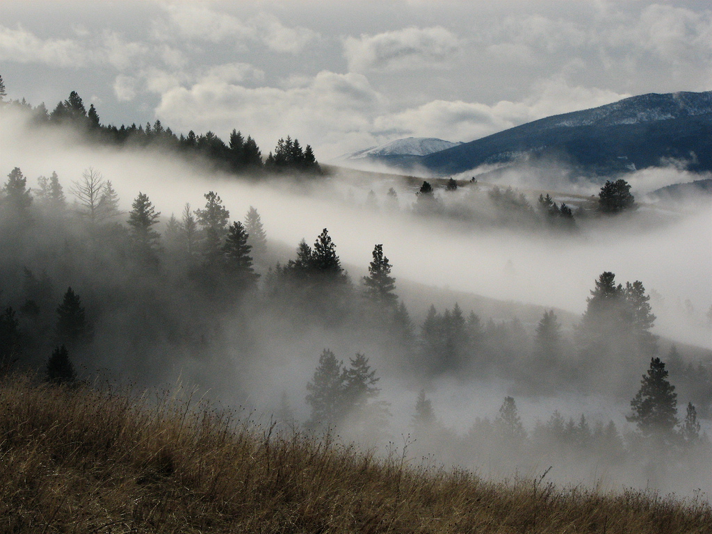 Fall In Maine Wallpaper Photographing The Fog 16 Photos Of Morning Mist In Idaho